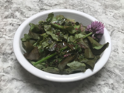 oakleaf-salad-with-lemon-mint-vinaigrette